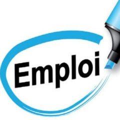 Logo du groupe EMPLOI